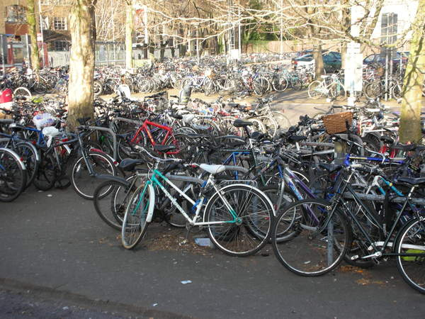 Cycle parking Cambridge