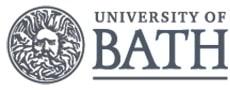 Bath Üniversitesi