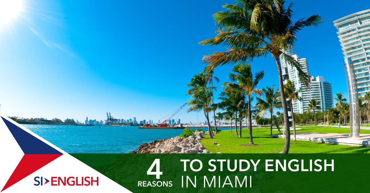 Study English in Miami